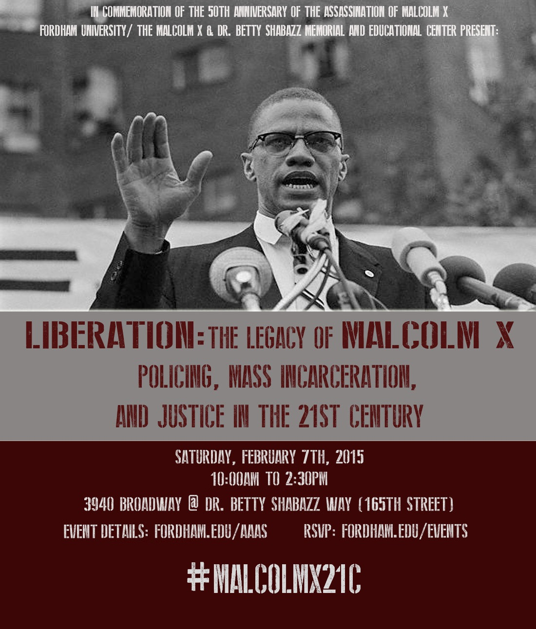 What were malcolm x's main ideas?